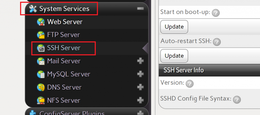 Choose SSH Server on InterWorx