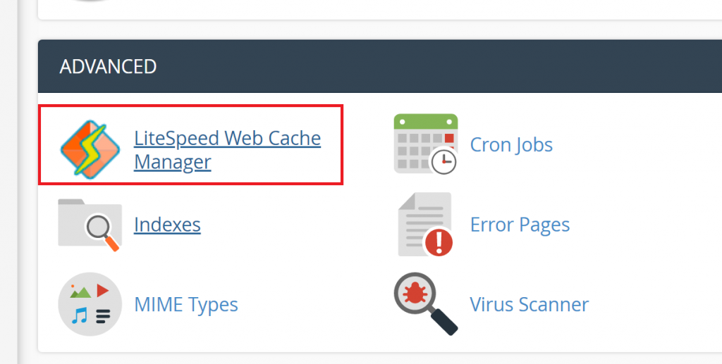 LiteSpeed Web Cache Manager in cPanel