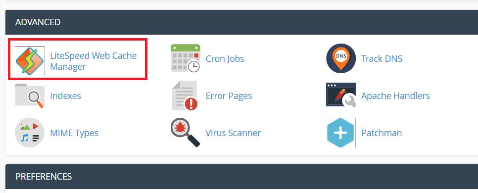 Using LiteSpeed for Server Caching